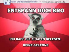 Entspann dich Bro http://islamische-sprueche.de/meme-zitate/entspann-dich-bro/