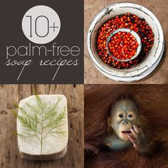 10+ #DIY Palm-Free Soap Recipes (Cold Process)