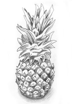 finally got round to drawing a pineapple i was quite happy with how it turned out. ^_^ Pineapple Sketch still life Pineapple Sketch, Pineapple Drawing, Pineapple Art, Pinapple Decor, Pineapple Design, Still Life Drawing, Drawing School, Coloring Book Pages, Art Drawings