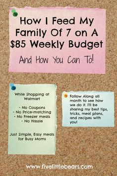Cooking on a budget is very important to many families in today's economic climate. The biggest part of the family budget goes to buying food. Budget Meal Planning, Cooking On A Budget, Budget Planner, Easy Cooking, Weekly Budget, Family Meal Planning, The Plan, How To Plan, Health And Wellness