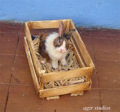 OOAK 1 12 Dollhouse Miniature Rabbit Bunny Animal Furred Realistic Handmade Iadr   eBay