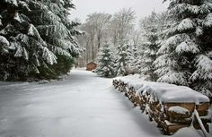 <3 Snow Landscape | The Great Outdoors