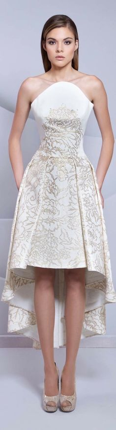 The fabric of the is dress is beautiful || Tarek Sinno couture 2015