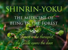 Go to a Forest. Walk slowly. Breathe. Open all your senses. This is the healing way of Shinrin-yoku Forest Therapy, the medicine of simply being in the forest.http://www.shinrin-yoku.org/shinrin-yoku.html
