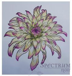 Amazing tutorial showing how to colour this dahlia stamp with Spectrum Noirs. Love this one!