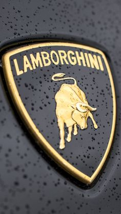 Lamborghini Logo Close-up iPhone 6 wallpaper Maserati, Bugatti, Porsche, Audi, Huracan Lamborghini, Koenigsegg, Car Badges, Car Logos, Luxury Sports Cars
