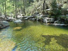 Corsica - Fleuves et Rivieres Corse - Commune Evisa - Le Ruisseau d'Aitone de 11,9 km Longueur est un affluent de la Rivière De Porto.