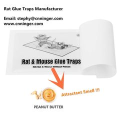 Rat and Mouse Glue Traps with Strong Attractant Peanut Butter Smell Glue Contact us for your own brand business now!!! Email: stephy@cnninger.com Whatsapp:86 18867650058 www.cnninger.com