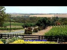 South Australia Wine Tours - McLaren Vale, Barossa Valley, Adelaide Hills