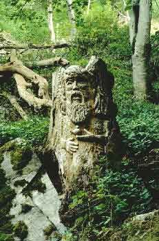 Druids Trees:  Old Man of #Forest, sculpture at Weem Wood, #Scotland.