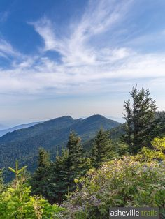Hike the Deep Gap Trail to beautiful views at the Mount Craig Summit in Mount Mitchell State Park