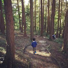 【speaklow2】さんのInstagramをピンしています。 《森の中を自由に遊ばせる。色んな発見で遊んでほしい。ゲームなんかよりきっと面白い。 #forest #naiture  #play #kids  #discovery  #森 #里山 #遊び #発見》