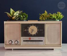 Vintage Clock Radio Planters for Dad by Brenda Ponnay for Alphamom.com #FathersDay #FathersDayGift #FathersDay #plantcraft #upcycledcraft #FatherDayCraft