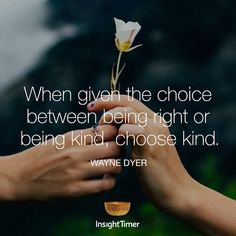 1,103 vind-ik-leuks, 13 reacties - Insight Timer (@insight) op Instagram: 'When given the #choice between being #right or being #kind, choose kind. ##waynedyer'