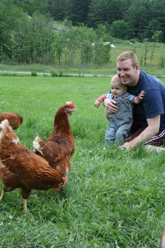 Daddy, Brock and the hens #cagefreeeggs #cagefreekids #peteandgerrys