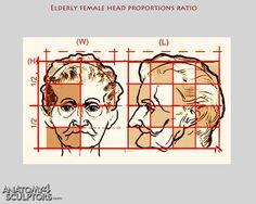 elderly female head proportions