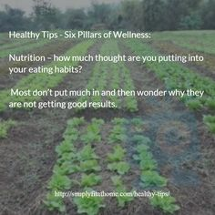 Healthy Tips - Six Pillars of Wellness: Nutrition – how much thought are you putting into your eating habits?