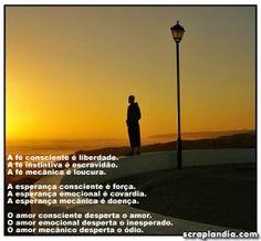 www.scraplandia.com