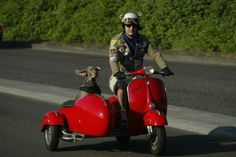 Google Image Result for http://www.scooter-sidecars.com/wp-content/uploads/2007/11/dallas-sidecar.jpg
