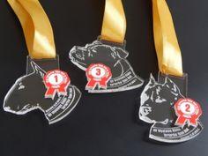 Świetny medal pamiątkowy - XV Wystawy Klubu Terierów Typu Bull. Medale z pleksi przezroczystej, z wklejką z laminatu.