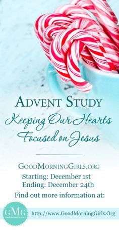 Free online Bible study starting on December 1st! Invite some friends and join us! We have a children's study coming out too, later this week! LoveGodGreatly.com