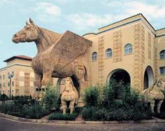 The Golden Horse Casino, Pietermaritzburg. Golden Horse, Palermo, South Africa, Past, Places To Visit, Lion Sculpture, African, Horses, Statue