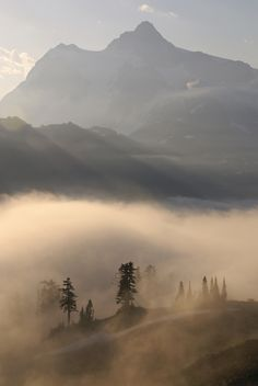 Mt. Shuksan and low clouds in the morning From Kulshan Ridge Mt. Baker-Snoqualmie National Forest, Washington.