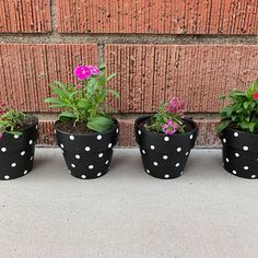 Decorated Flower Pots, Painted Flower Pots, Painted Pots, Tin Can Flowers, Colorful Flowers, White Flowers, Painting Cement, Painting Plastic, Terracotta Flower Pots