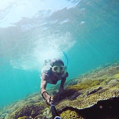 Jelajah Wisata Bima - Yuk jelajah tempat wisata Bima ini!! - Photo today by taken at Bajo Pulo Beach Sape #exploreindonesia #... - Yuk jelajah tempat wisata Bima ini!! – Photo today by @sisitimur taken at Bajo Pulo Beach Sape #exploreindonesia #indonesiakaya #indonesiabagus #discoverindonesia Nikmati inspirasi Wisata Bima hari ini di Liburdulu.com! – Photo Today, Sci Fi, Explore, Beach, Blog, Travel, Science Fiction, Viajes, The Beach