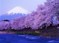 ญี่ปุ่น BIKKURI TOKYO-OSAKA 7 DAYS 4 NIGHTS โดยสายการบินแอร์เอเชียเอ็กซ์ (D7) เดินทาง:       20 – 26 เมษายน 2556 ราคา39,900.-    บาท รับส่วนลด 500 บาท^_^ คลิ๊กดูรายละเอียดเพิ่มเติมได้ที่ http://99worldtravel.com/%E0%B8%97%E0%B8%B1%E0%B8%A7%E0%B8%A3%E0%B9%8C/%E0%B8%8D%E0%B8%B5%E0%B9%88%E0%B8%9B%E0%B8%B8%E0%B9%88%E0%B8%99/view/477 คลิ๊กดูทัวร์ทั้งหมด http://99worldtravel.com/tours_by_interest