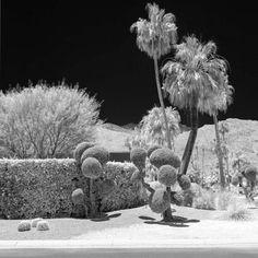 Bright Morning - Natalie Bird - Shop art Affordable Art Fair, Modern Artists, Contemporary Artwork, Built Environment, Pigment Ink, Fine Art Paper, Attraction, Lion Sculpture, Around The Worlds