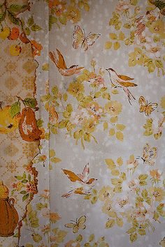 heinrick oldhauser, county line road - kitchen wallpaper, Osceola County