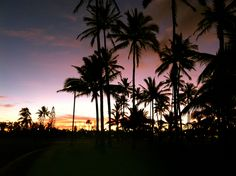BYU Hawaii Laie Cant Wait For This To Be My Life