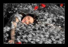 Rige la magia en su vida, es gobernada por el encanto y el hechizo en su existencia. Sobrevive cada adversidad, porque su corazón repleto de amor está. No hay infortunio,  ni desgracia que cruce  su camino, élla sigue las pistas e indicios del destino con gran delicadeza y  mucha sutileza... ...