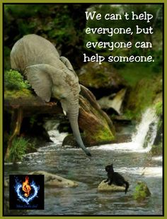 We can't help everyone, but everyone can help someone.