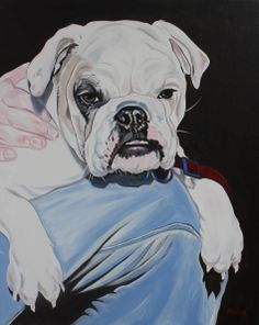 "beautiful bulldog 30x24"" oil on canvas by DRAGOSLAV MILIC"