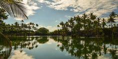 Aloha Friday Photo: Reflecting Paradise | Go Visit Hawaii