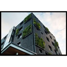 """The project was described by Architizer as a prime example of the """"adaptive re-use"""" of an existing, low grade building into a high-end environmentally sustainable development.  A 'second skin', made up of black aluminium batten and vertical garden panels, was added to the existing masonry external in a bid to improve the thermal performance of the building. The building has been applauded for its environmental sustainability"""