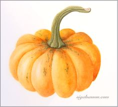 Inspiration for Pumpkin drawing Halloween Pumpkin Images, Pumpkin Photos, Halloween Art, Autumn Painting, Autumn Art, Botanical Illustration, Botanical Prints, Pumpkin Drawing, Autumn Tattoo
