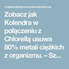 Zobacz jak Kolendra w połączeniu z Chlorellą usuwa 80% metali ciężkich z organizmu. – Szkolenia dietetyczne