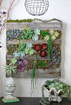 DIY Vertical Pallet Succulent Garden. I like the String of Pearls dangling down.