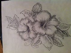 Hibiscus tattoo artwork. My take on an existing design. Will be done on a friends right shoulder.: