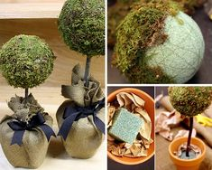 DIY Pottery Barn Craft Ideas | Homemade Topiaries by DIY Ready at http://diyready.com/diy-projects-pottery-barn-hacks