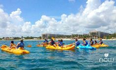 Up for a little adventure? Take a kayak tour during your stay at Now Sapphire Riviera Cancun!