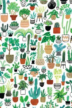 Plant Party Print Bring some major plant action into your life! This Plant Party print depicts a ton Plant Wallpaper, Flower Wallpaper, Drawing Wallpaper, Plant Background, Cactus Art, Flower Backgrounds, Iphone Backgrounds, Pretty Backgrounds, Gouache Painting