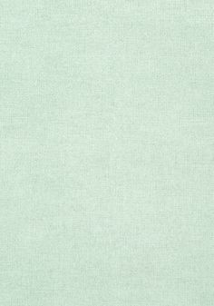 DUBLIN WEAVE, Light Aqua, T57142, Collection Texture Resource 5 from Thibaut