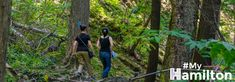 See great views, waterfalls and more with these hiking and biking trails in Hamilton. Bike Trails, Hiking Trails, Biking, Tourism Website, Natural Playground, Great View, Waterfalls, The Great Outdoors, Niagara Falls