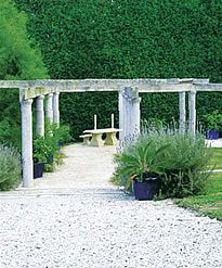 A well kept and very beautiful secret, well worth exploring for a venue option Auckland, Exploring, Wedding Venues, Pergola, Shed, Outdoor Structures, Beautiful, Style, Wedding Reception Venues