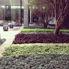Escritório lupa arquitetos BC #lupaarquitetos #office #paisagismo #landscape