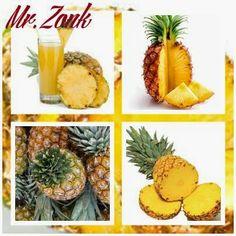 Bahaya Terlalu Akrab Dengan Peliharaan - Mr.Zonk